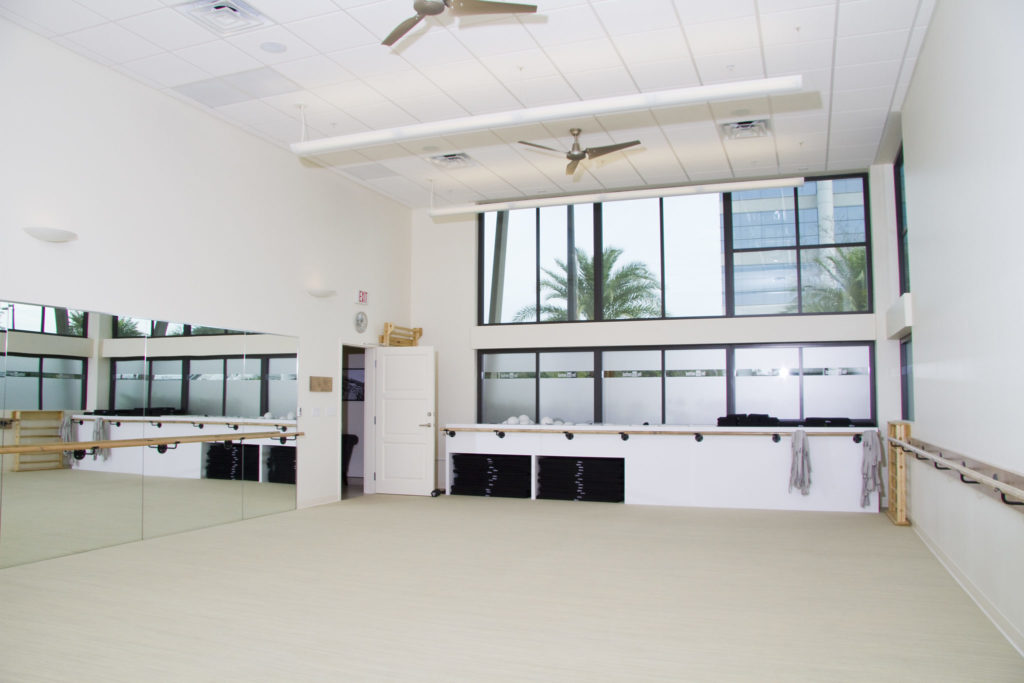 natural lit barre studio, barre, barre classes, the bar method, tampa, westshore, fitness