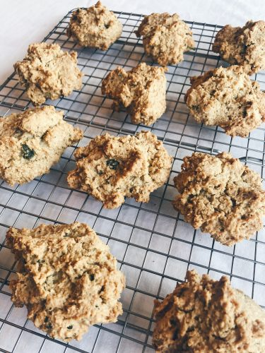 paleo biscuit recipe